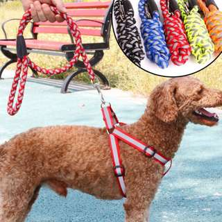 💥 CHEAPEST - $9 OFFER - Reflective Dog Harness with Leash for Small Medium Dogs