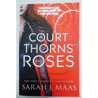 A Court of Thorns and Roses (Sarah J. Maas)