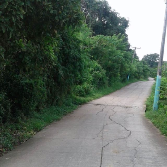 4.3 hectare lot in Cavite (Clean Title)
