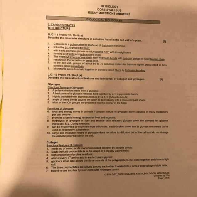 molecular biology exam questions and answers