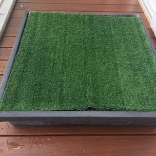 Pet Loo with lawn n collection tray