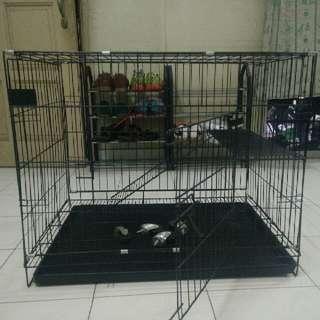 Sangkar/Cage Kucing