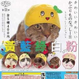 【收購】船梨精 貓咪頭套 扭蛋 轉蛋