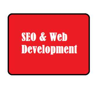 SEO and Website Developement