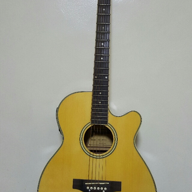 Fernando Acoustic Electric Guitar Music Media Music Instruments On Carousell