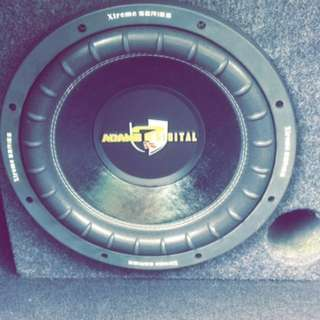 Adams Digital woofer sekali Box