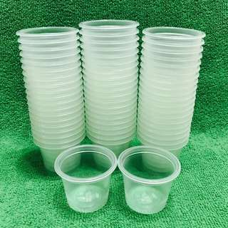 Disposable 4.2 Ø round cups
