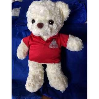 🚚 Bear teddy