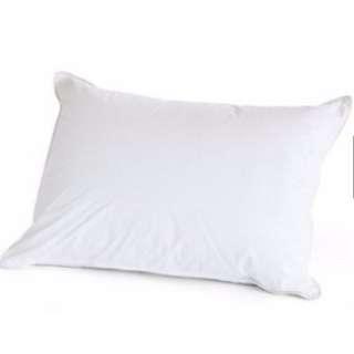 450gram Thin Soft Pillow Bantal Tidur - Washable Machine & Dryable