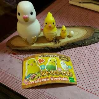 扭蛋 鸚鵡俄羅斯娃娃 一組一起賣