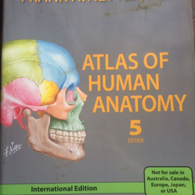 Frank Netter Atlas of Human Anatomy 5th Edition. (Cond: 9/10) (NRP ...