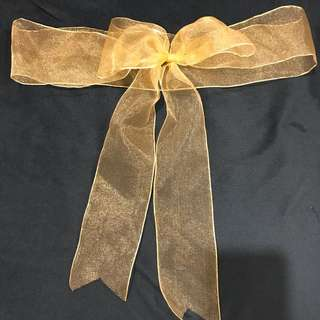 Chair ribbons for occasions