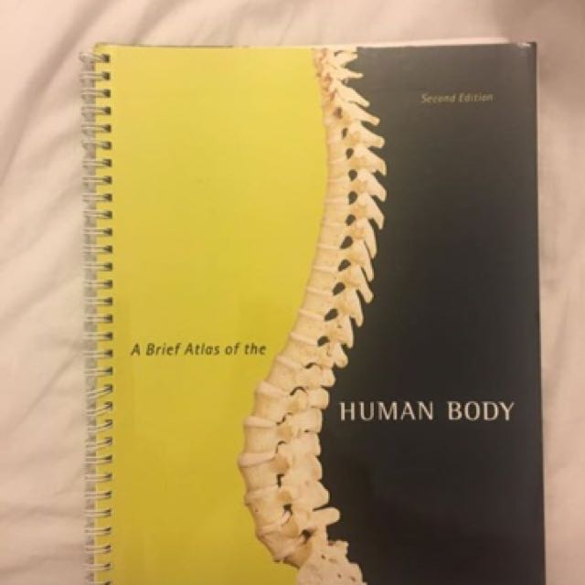 A brief atlas of the human body (second edition)