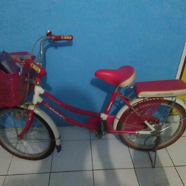 Harga Sepeda Phoenix Anak Perempuan - Terkini Online