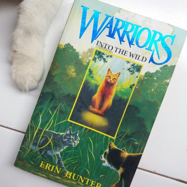 Warriors (Novel)