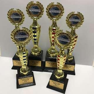 Customised trophy