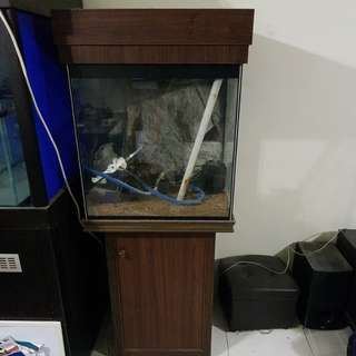Old fish tank