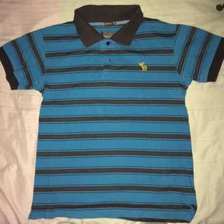 Striped Abercrombie Polo Shirt