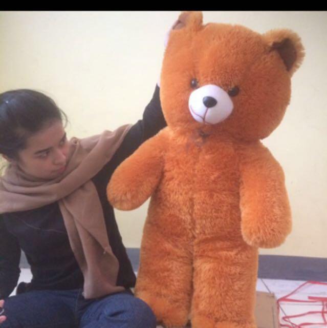 boneka bear (nett price)