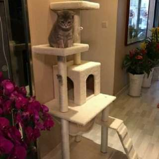 FREE DELIVERY!! $50 Cat condo Scratching Post House Cat Tree Climber Play Pad Pole Kitty Platform Kitten White Apple iPhone Samsung Furkid Feline Pet Meow Carpet Furniture Stand Cream Beige Ivory Grey Silver Black Catnip