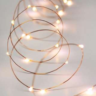 Copper Wire Fairy Lights Rental