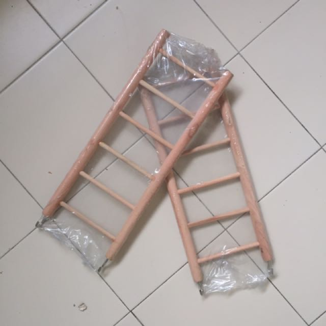 Ladder for Budgie or Conure