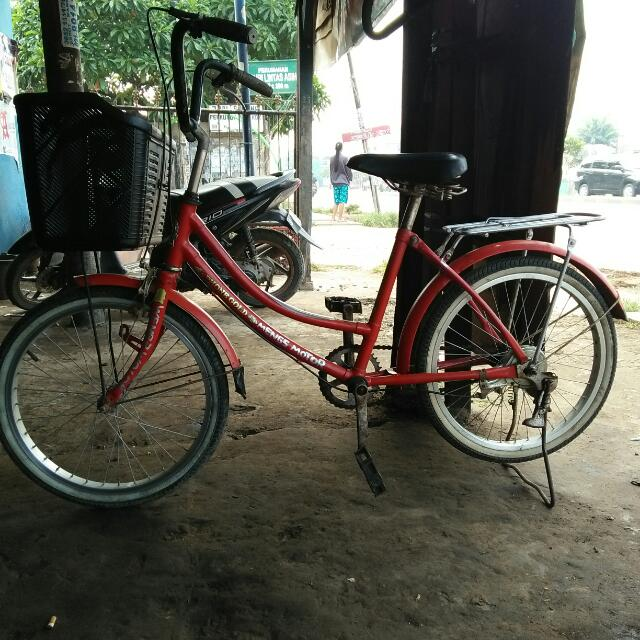 Sepeda Ukuran 24
