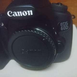 Canon 60d Canon 50mm f1.8