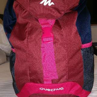 Quechua hiking backpack 法國名牌行山背囊