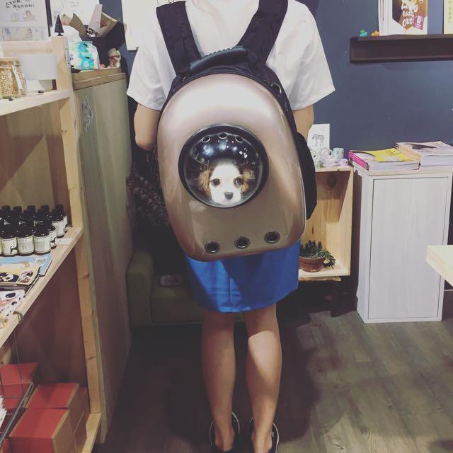 外星喵🐱小型犬🐶適用 新版 透氣十足 古銅色太空感後背包