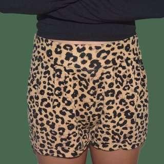H&M Leopard Shorts