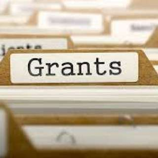 Company Grants and Subsidies