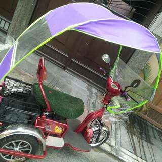 E.bike upgraded with canopy
