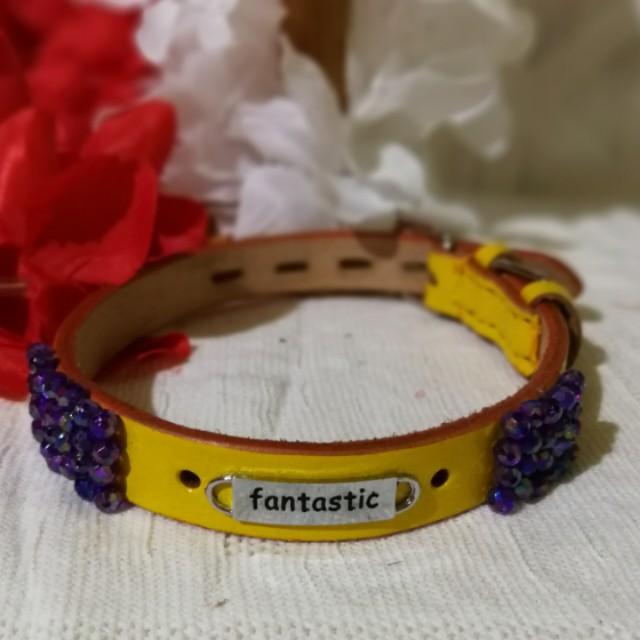 Customized pet collar