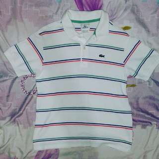 42675cf07f04f6 Authentic Lacoste polo shirt