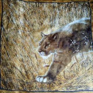 Autyentic giovanni silk scarf