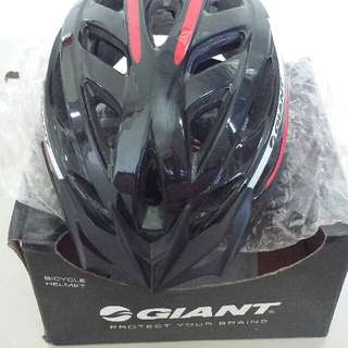 GIANT Bike Helmet (L)