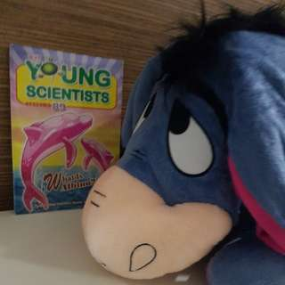 BN Big Eeyore Softtoy