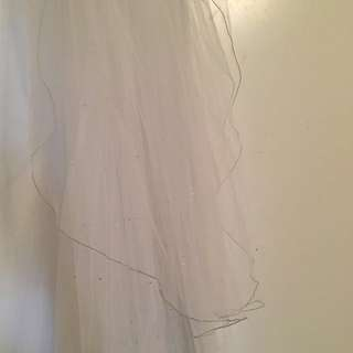 Cathedral length veil adorned with rhinestone/crystal gems
