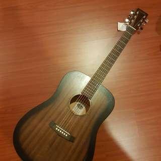 Tanglewood Guitar - BRAND NEW