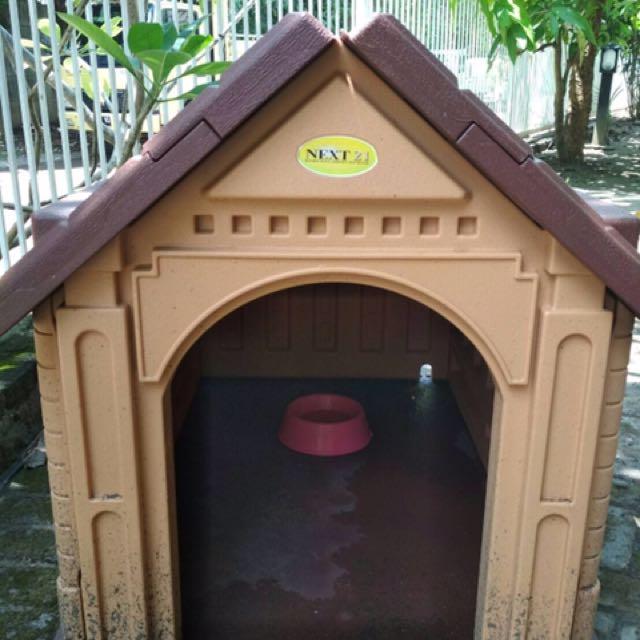 Rumah Plastik Doggy