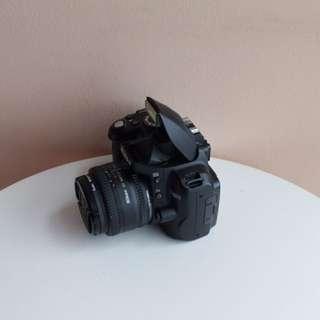 Nikon D3000 + Nikon 50mm 1.8D