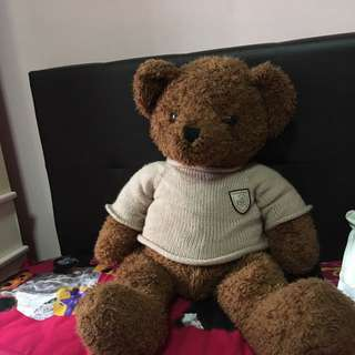 Teddy Bear Extra Large Limited Edition