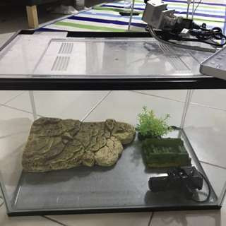 Turtle tank with all accessories