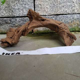 Driftwood for sale