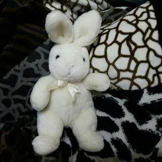 🐰🐰可愛兔兔