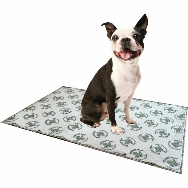 New Pooch Pad replacement pad