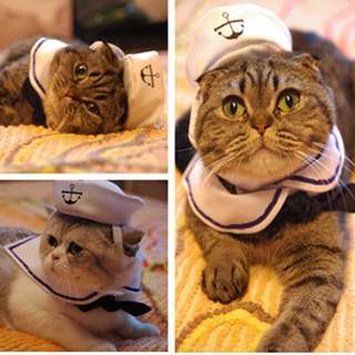 Sailor Costume For Pets