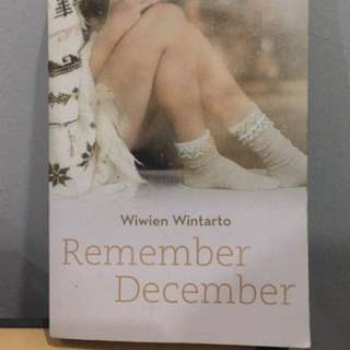 Remember December Novel