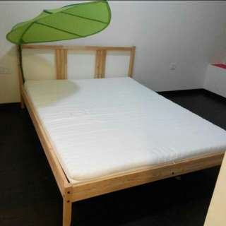 Ikea Bed Frame & Malfors Mattress